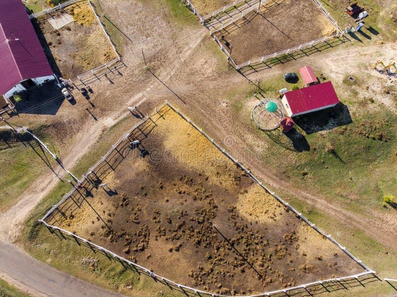 Luftbrummenansicht des l?ndlichen Pferdebauernhofes oder -ranch Dorf oder Landschaft mit Pferdest?llen und -scheunen stockfotos