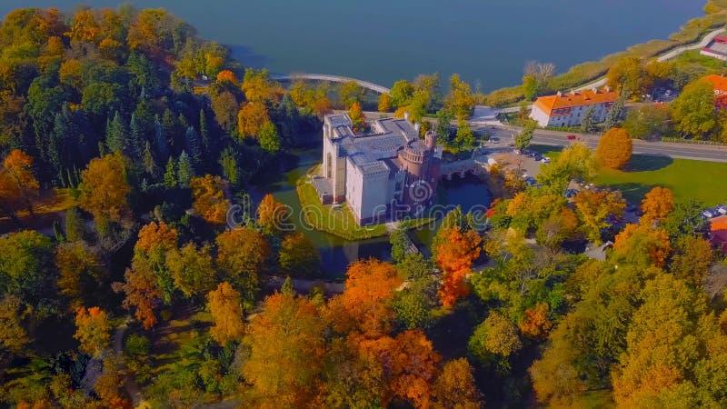 Luftbrummenfoto - obenliegende Ansicht eines üppigen grünen Waldes ist es ein schöner Platz in Mitteleuropa 2019 lizenzfreie stockfotos