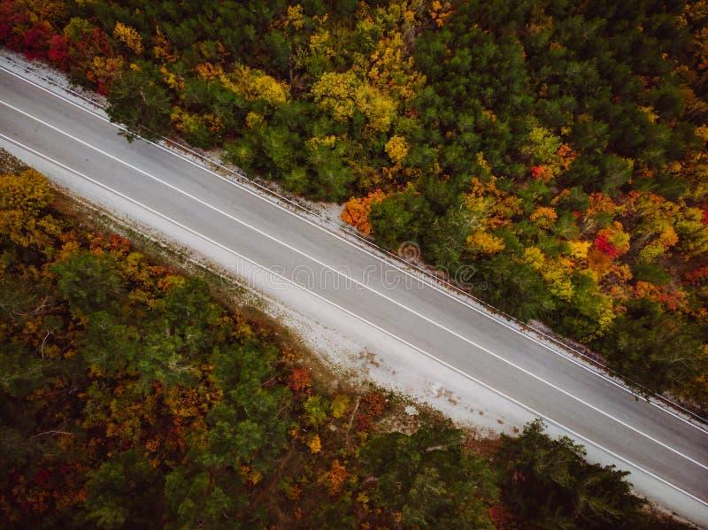 Luftbrummenschuß der Asphaltstraße im Berg mit Herbstbäumen lizenzfreie stockfotos