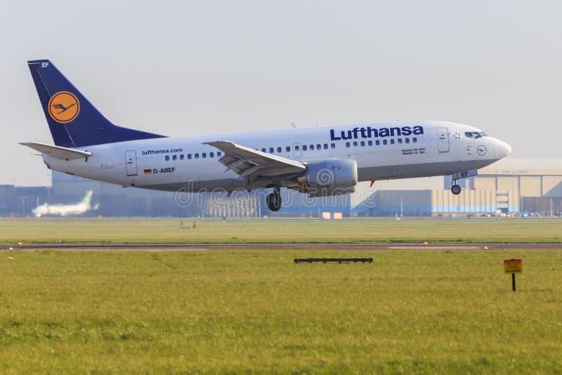 Lufthansa Boeing 737 σε Schiphol στοκ εικόνες