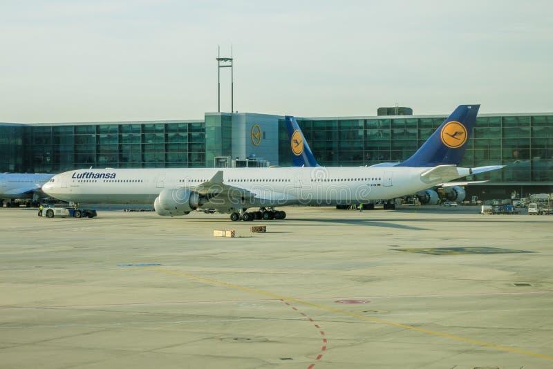 Lufthansa flygbuss A340 på Frankfurt royaltyfria bilder