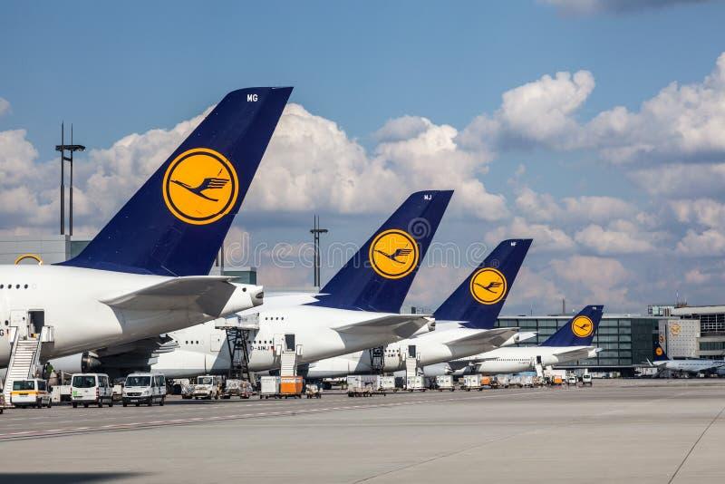 Lufthansa flygplan på den Frankfurt flygplatsen arkivbild