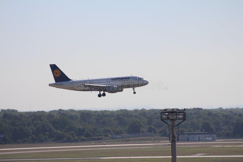 Lufthansa landing royalty free stock images
