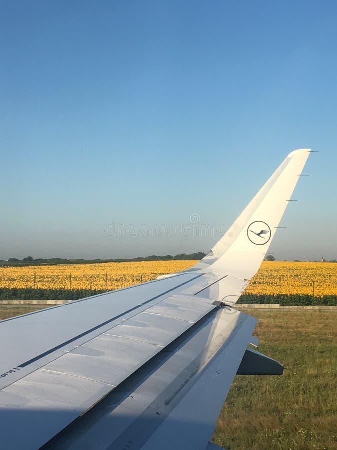 Lufthansa-Vliegtuig op de baan stock foto