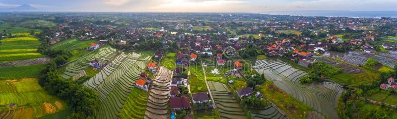 Luftpanorama des Dorfs von Pererenan lizenzfreie stockfotos