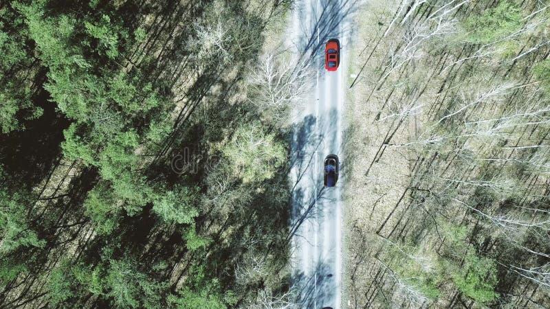 Luftschuß der Autostraße im Wald an einem Frühlingstag, Draufsicht stockfotos