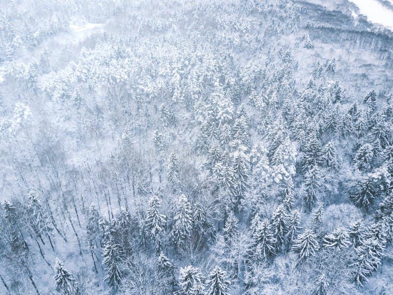 Luftwinterwaldansicht Brummenlandschaft, fliegen oben Weiße Bäume mit Schnee, schöner Tapetenhintergrund Hohes modernes photogra stockfotos