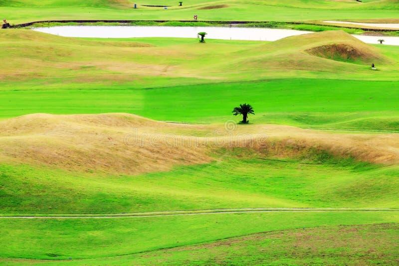 Lugar bonito do golfe com fundo agradável fotografia de stock royalty free