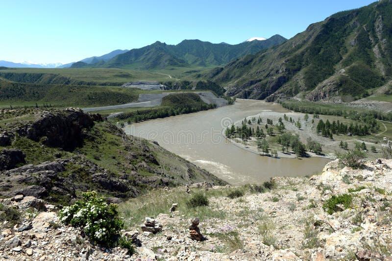 Lugar da afluência dos rios Katun e Chuya em montanhas de Altai Sibéria, Rússia foto de stock