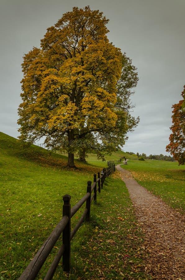 Lugar de enterramiento de Viking en Uppsala vieja, Suecia fotografía de archivo libre de regalías