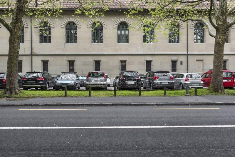 Lugar de estacionamento sob árvores planas fotos de stock royalty free