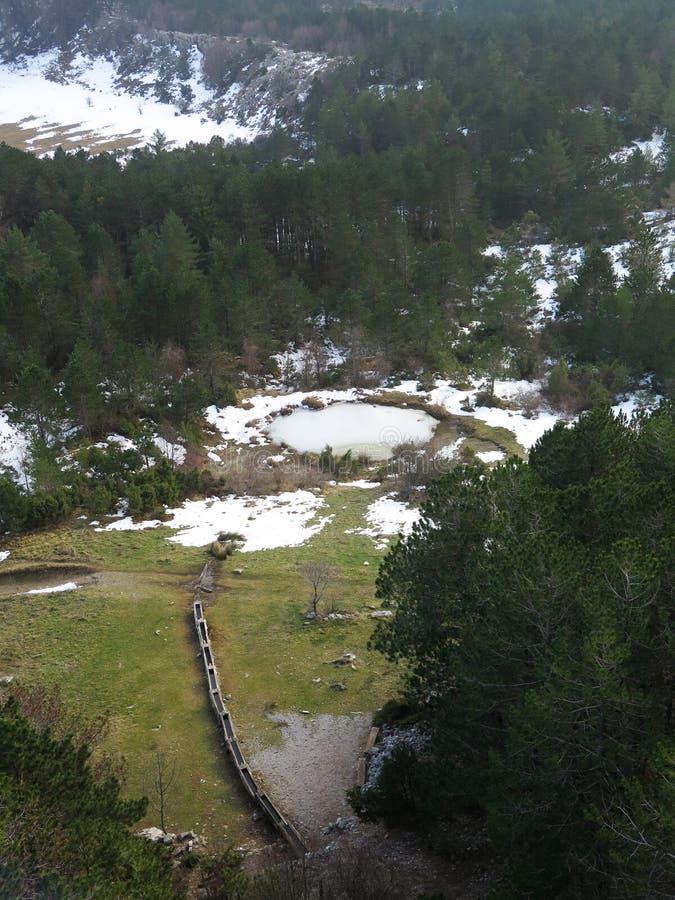 Lugar de riego en el prado imagenes de archivo
