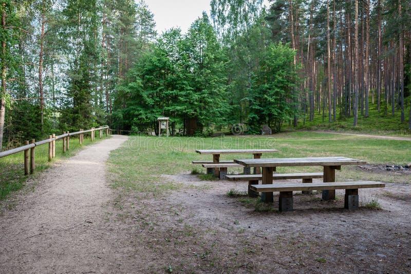 Lugar do piquenique na floresta com tabelas e bancos em um trajeto de passeio fotos de stock royalty free