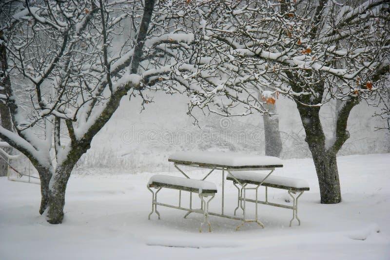 Lugar do piquenique no inverno foto de stock