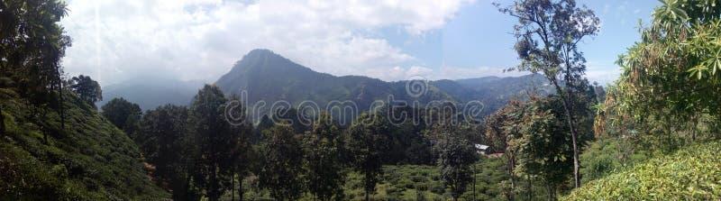 Lugar hermoso de la naturaleza Ella Sri Lanka imagen de archivo
