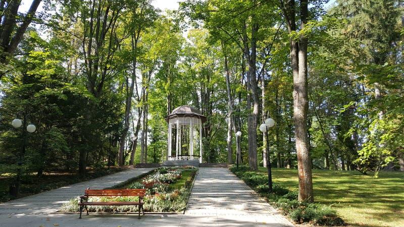 Lugar mágico em algum lugar no parque imagens de stock royalty free