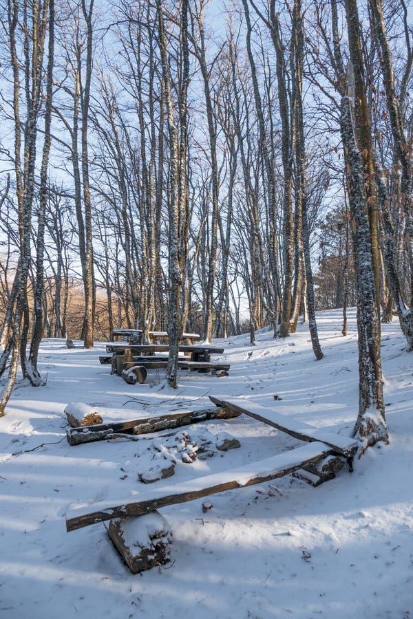 Lugar para a recreação dos mochileiros na floresta do inverno imagem de stock