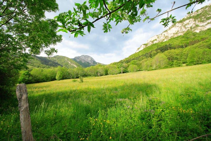 Lugar Rural Verde Al Resto Imagen de archivo libre de regalías