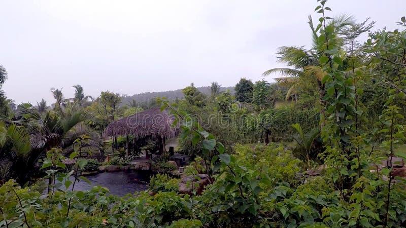 Lugar secreto: lagoa da montanha nos trópicos imagens de stock