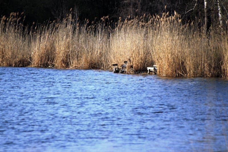 Lugares vazios da pesca no lado do rio imagem de stock royalty free
