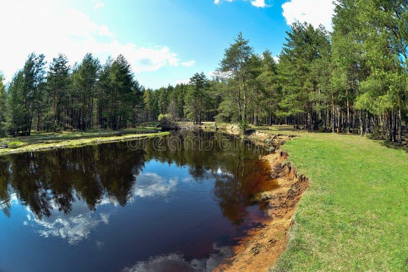 Lugna flod i sommaren Ställe för att fiska i floden arkivfoto