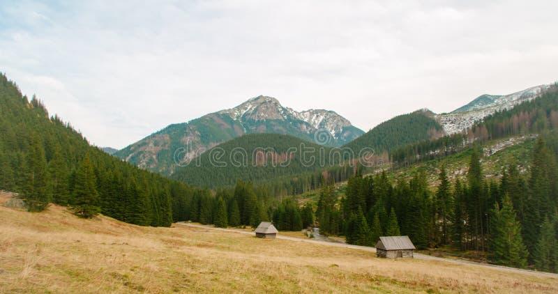 Lugna natur med berg-, dal-, skog- och landshus royaltyfri bild