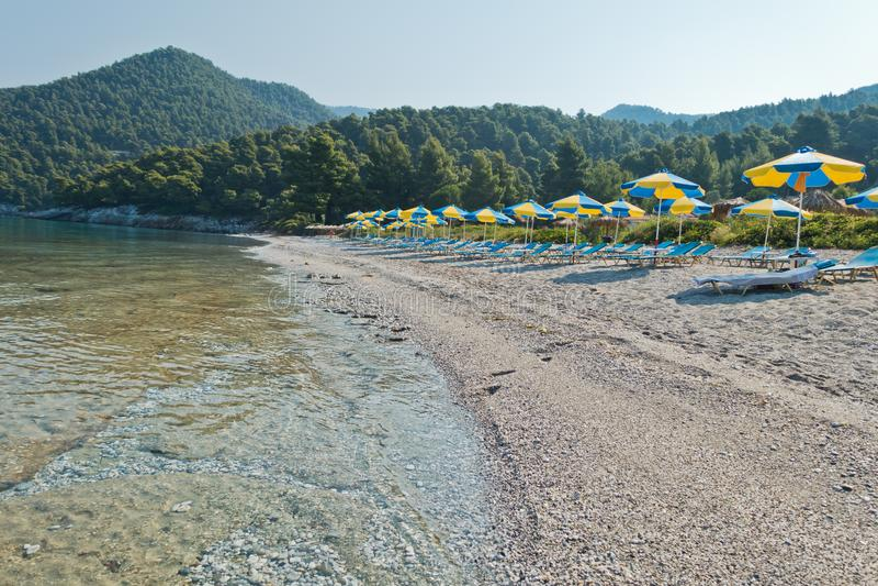 Lugna och kristallklart turkoshavsvatten på morgonen, Milia sätter på land, ön av Skopelos royaltyfri foto