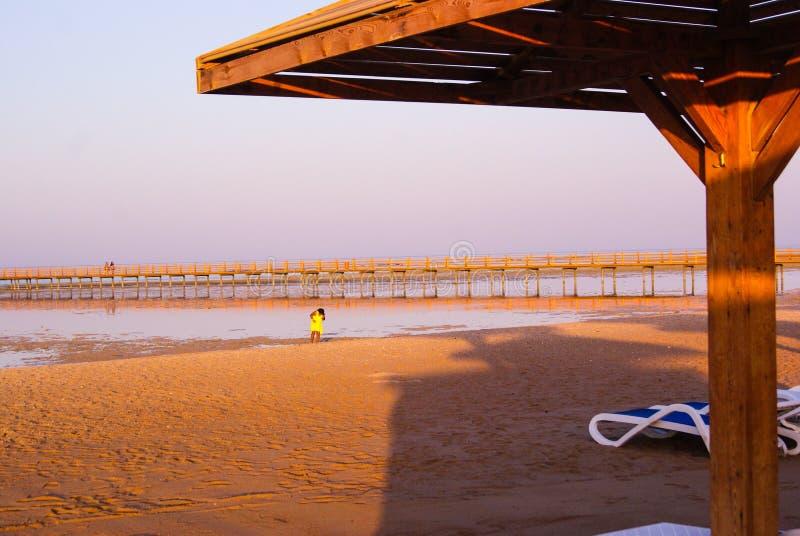 Lugna strandmarkisredt arkivfoton