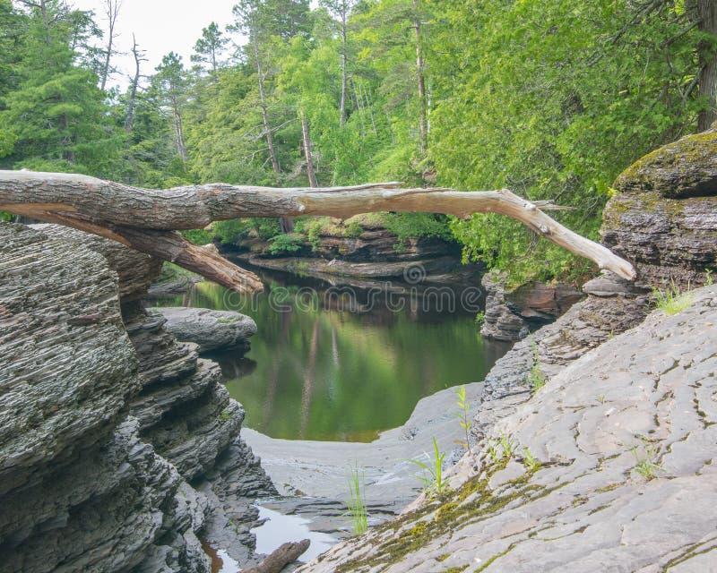 Lugna vatten på stenig skogshoreline av floden i delstatsparken för ett piggsvinbergvildmark i övrehalvön av Michigan arkivfoton