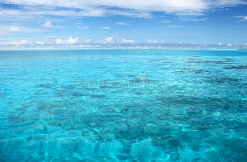 lugnat indiskt hav arkivfoto
