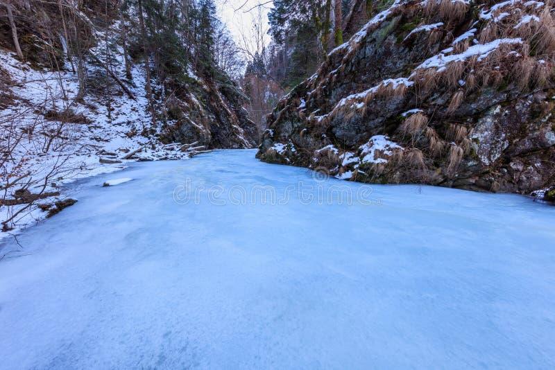 Lui Stan Gorge nell'inverno, Romania di Valea immagine stock libera da diritti