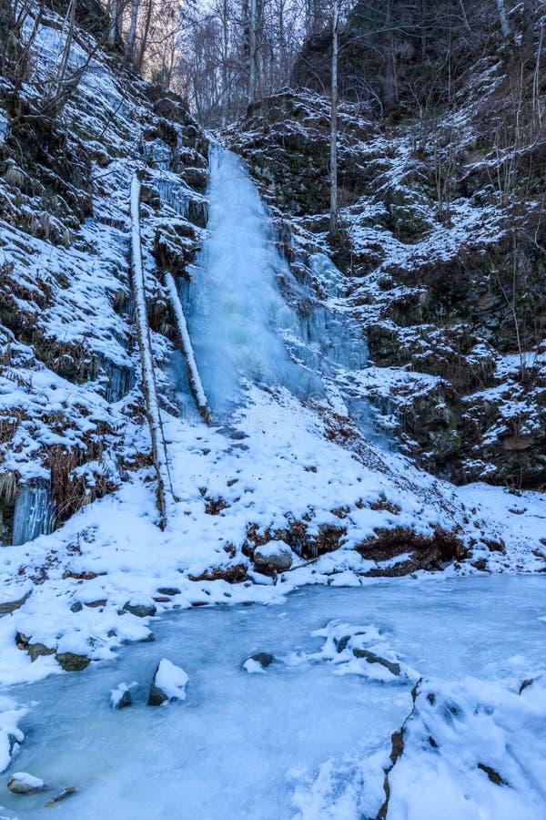 Lui Stan Gorge nell'inverno, Romania di Valea fotografia stock