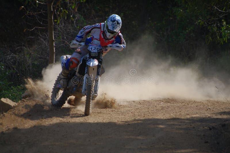 Luis Portela Morais images stock