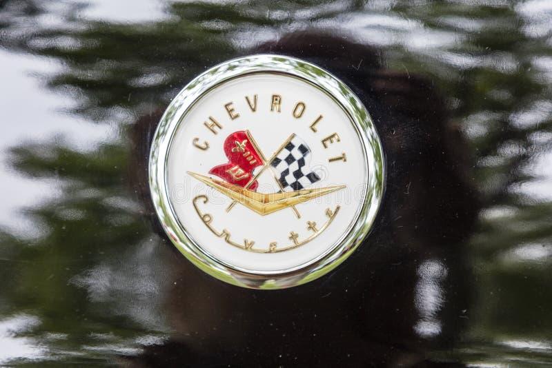 Lujo del vintage del logotipo de las insignias de Chevrolet Corvette 1956 imagen de archivo libre de regalías