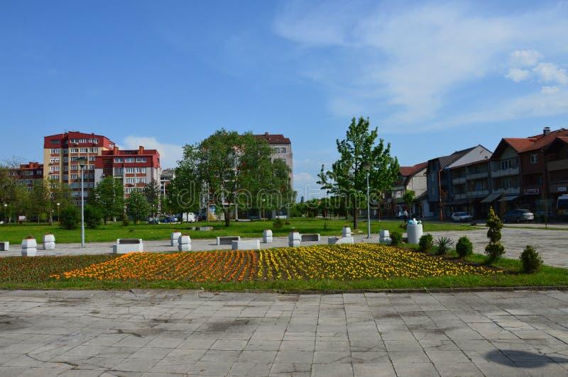Lukavacv miasteczko jest dekorującymi kwiatami obraz royalty free