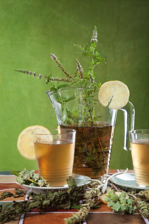 Lukrowa herbata z miętówką obraz stock