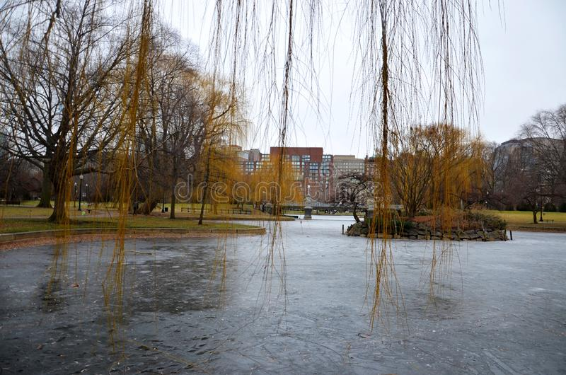 Lukrowa zima w Boston błoniach obrazy stock