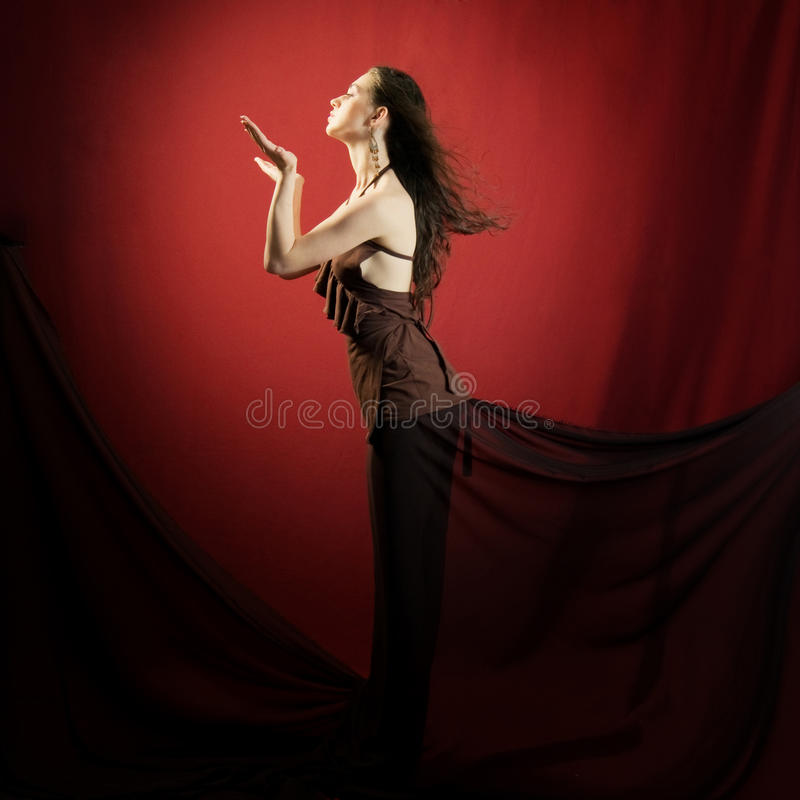 luksusowa kobieta fotografia stock