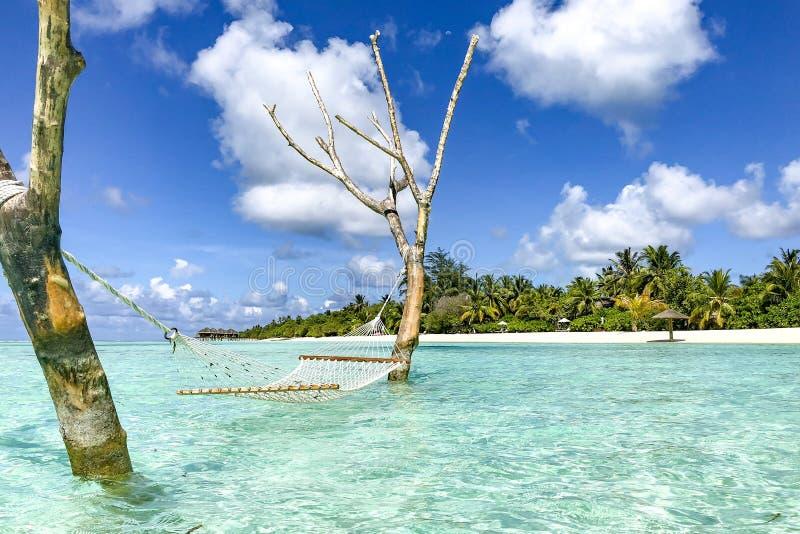 Luksusowa miejscowość nadmorska z nadmiernym wodnym hamakiem i wodnymi willami Doskonalić tropikalny urlopowy miejsce przeznaczen obrazy stock