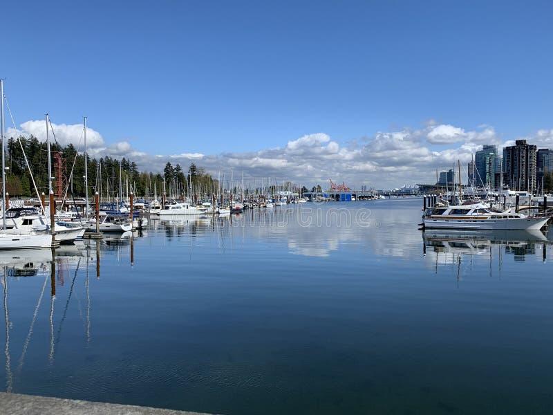 Luksusowe łodzie zadokowane i wyłożone w porcie w Vancouver zdjęcie stock