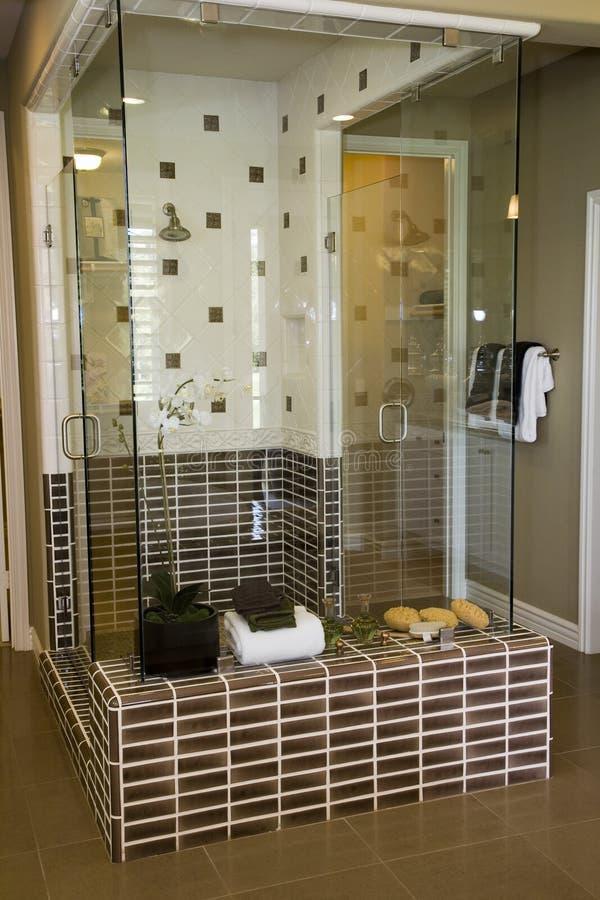 luksusowe prysznic w domu zdjęcie stock