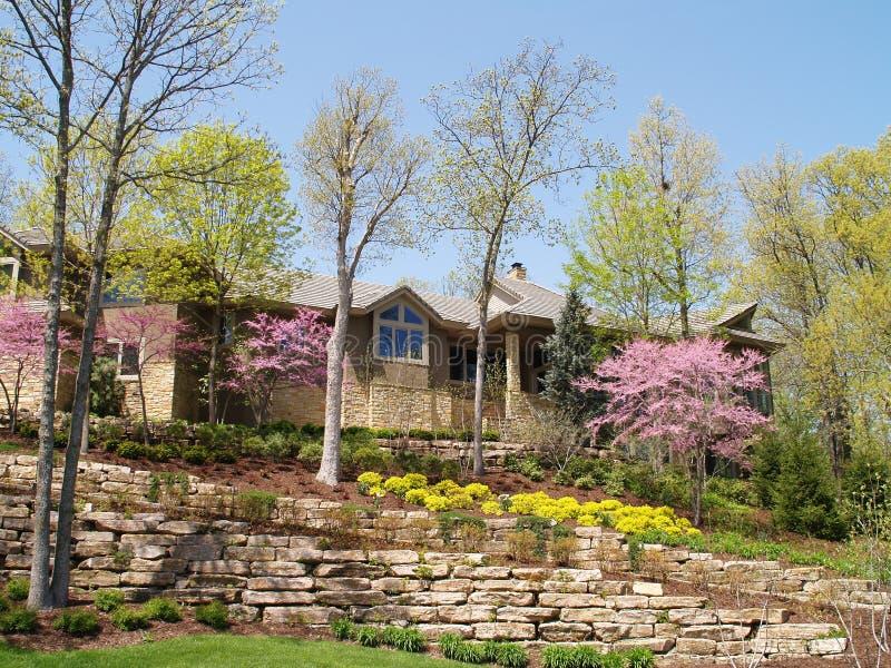 luksusowe wiosna domowa zdjęcia royalty free