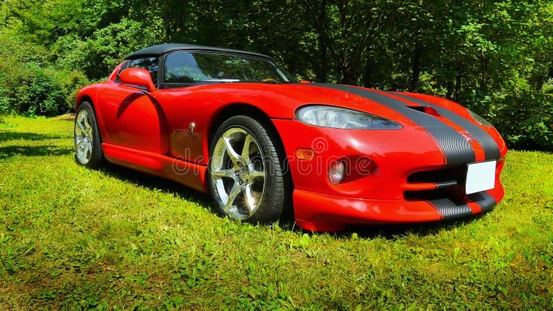 Luksusowi sportów samochody obraz royalty free