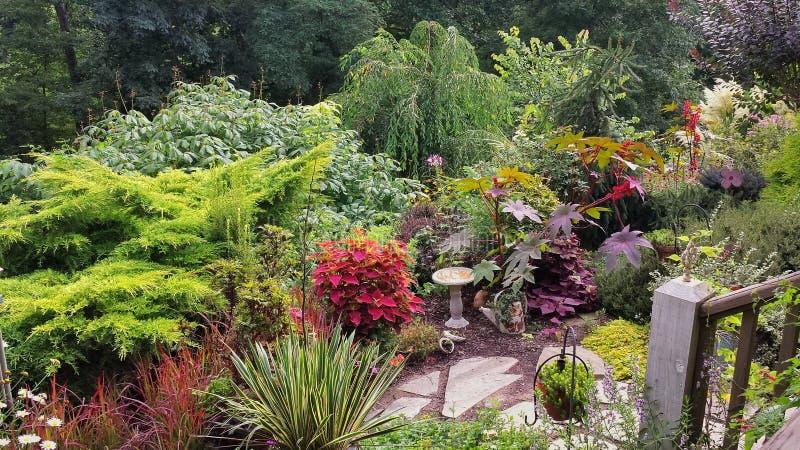 Luksusowy Kolorowy lato ogród w Pólnocna Karolina obraz royalty free