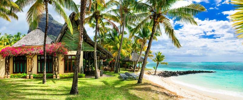 Luksusowy tropikalny wakacje Mauritius wyspa zdjęcia royalty free