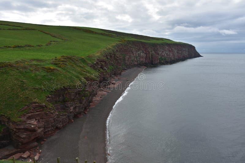 Luksusowy Zielonej trawy pole Nad Fleswick zatoka W Anglia obrazy royalty free