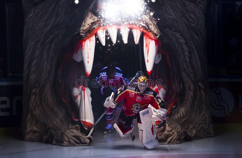 Lulea, Sweden - March 18, 2015. Joel Lassinantti (#34 Lulea Hockey) enters the ice in stock photo