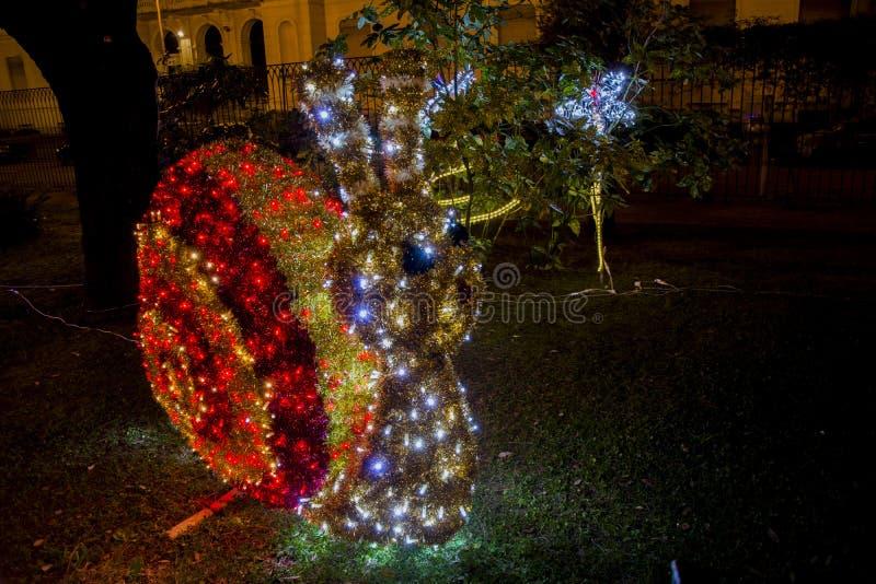 Lumaca delle luci in Salerno immagine stock