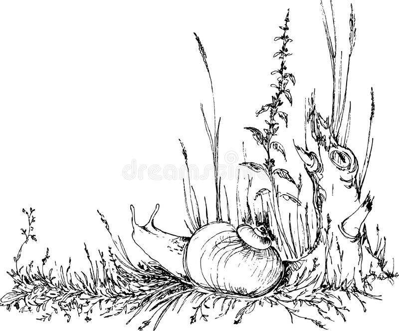 Lumaca disegnata a mano nell'erba illustrazione vettoriale