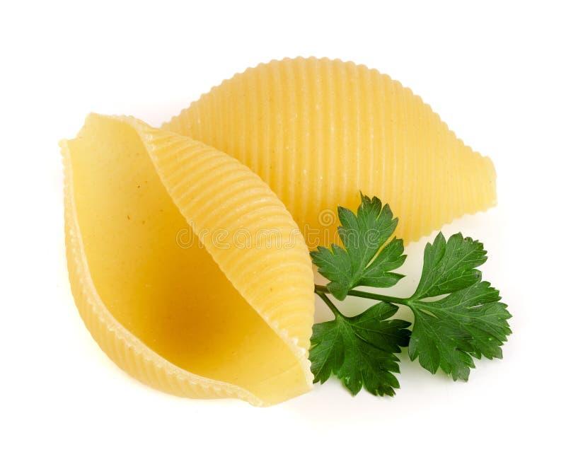 Lumaconi italiano com a salsa da folha isolada no fundo branco Lumache, snailshell deu forma à massa imagens de stock royalty free
